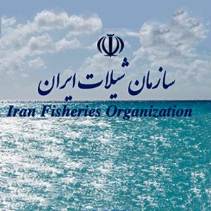 سازمان شیلات ایران
